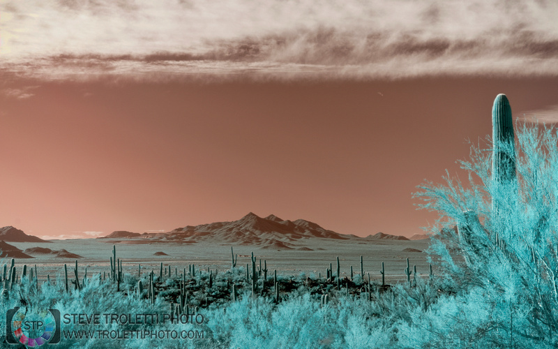 Southern Arizona - IR